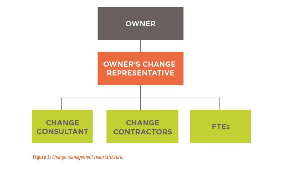 Figure 3: Change management team structure.