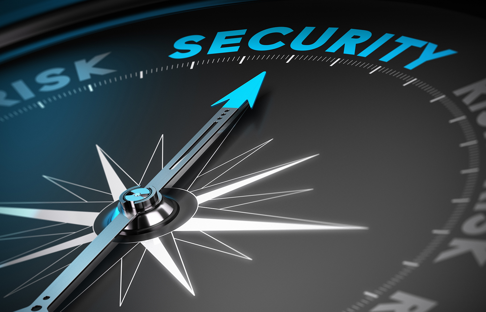 Security in an Emergent Threat Environment